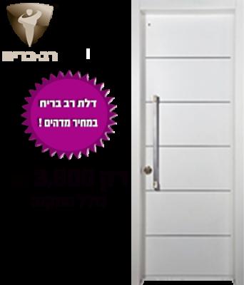 דלתות מעוצבות מיסטר דלת